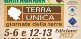 Tabaccheria Ricevitoria Bertoncini